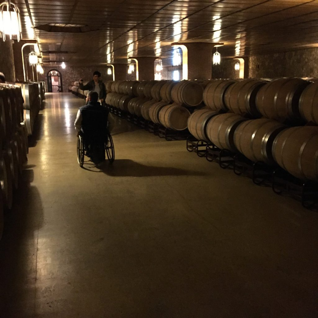 Accessible la rioja wine tour cave
